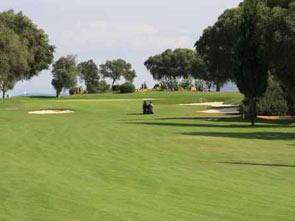 pola_golfowe
