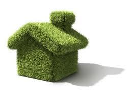 zielony_dom